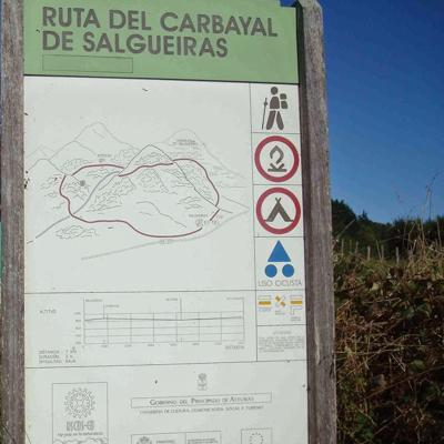 Ruta del Carbayal de Salgueiras COMARCA OSCOS-EO